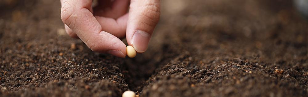 PJ3:次世代循環型農業|OMD International